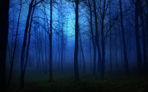 blue-dark-forests-1842577-1280x800