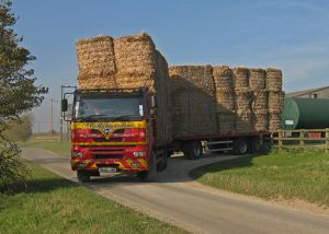 Transporting_Miscanthus_Bales